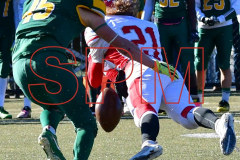 Gallery CIAC Football; Holy Cross vs. Wolcott - Photo # 2015