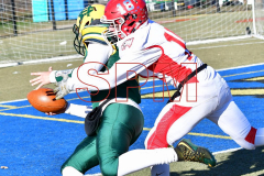Gallery CIAC Football; Holy Cross vs. Wolcott - Photo # 2082