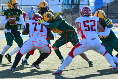 Gallery CIAC Football; Holy Cross vs. Wolcott - Photo # 2403