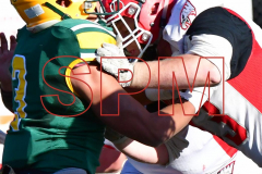 Gallery CIAC Football; Holy Cross vs. Wolcott - Photo # 2720