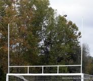 CIAC Football; Nonnewaug 0 vs. Valley Regional - Old Lyme 48 Photo # (422)
