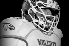 Gallery CIAC Football; Wolcott 44 at St. Paul 28 - Photo # A 021