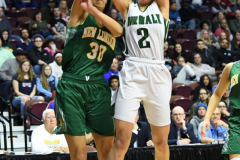 CIAC Girls Basketball Class LL Tournament Finals - #1 Norwalk 55 vs. #2 New London 53 (15)