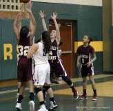Gallery CIAC Girls Basketball; NVL Tournament - #2 St. Paul 45 vs. #7 Sacred Heart 32 - Photo # (36)