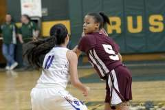 Gallery CIAC Girls Basketball; NVL Tournament - #2 St. Paul 45 vs. #7 Sacred Heart 32 - Photo # (48)