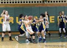 Gallery CIAC Girls Basketball; NVL Tournament #3 38 vs. Watertown #6 44 - Photo # (20)