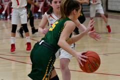 Gallery CIAC Girls Basketball; Wolcott vs. Holy Cross - Photo # 497