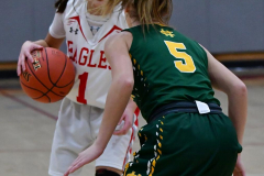 Gallery CIAC Girls Basketball; Wolcott vs. Holy Cross - Photo # 498