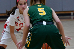 Gallery CIAC Girls Basketball; Wolcott vs. Holy Cross - Photo # 499