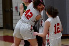 Gallery CIAC Girls Basketball; Wolcott vs. Holy Cross - Photo # 510