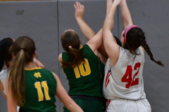 Gallery CIAC Girls Basketball; Wolcott vs. Holy Cross - Photo # 522