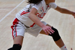 Gallery CIAC Girls Basketball; Wolcott vs. Holy Cross - Photo # 527