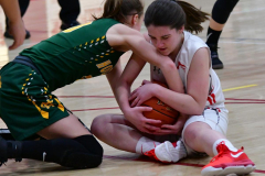 Gallery CIAC Girls Basketball; Wolcott vs. Holy Cross - Photo # 530