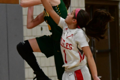 Gallery CIAC Girls Basketball; Wolcott vs. Holy Cross - Photo # 538