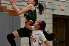 Gallery CIAC Girls Basketball; Wolcott vs. Holy Cross - Photo # 539