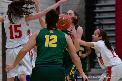 Gallery CIAC Girls Basketball; Wolcott vs. Holy Cross - Photo # 543