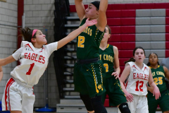 Gallery CIAC Girls Basketball; Wolcott vs. Holy Cross - Photo # 549
