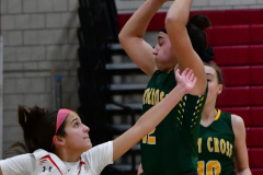 Gallery CIAC Girls Basketball; Wolcott vs. Holy Cross - Photo # 550