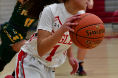 Gallery CIAC Girls Basketball; Wolcott vs. Holy Cross - Photo # 554