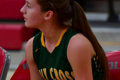 Gallery CIAC Girls Basketball; Wolcott vs. Holy Cross - Photo # 561