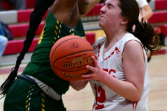 Gallery CIAC Girls Basketball; Wolcott vs. Holy Cross - Photo # 564