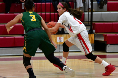 Gallery CIAC Girls Basketball; Wolcott vs. Holy Cross - Photo # 568