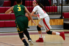 Gallery CIAC Girls Basketball; Wolcott vs. Holy Cross - Photo # 569