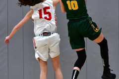 Gallery CIAC Girls Basketball; Wolcott vs. Holy Cross - Photo # 578