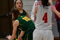 Gallery CIAC Girls Basketball; Wolcott vs. Holy Cross - Photo # 597