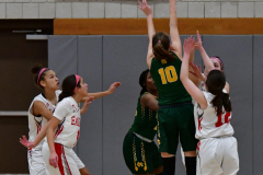 Gallery CIAC Girls Basketball; Wolcott vs. Holy Cross - Photo # 610
