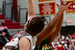 Gallery CIAC Girls Basketball; Wolcott vs. Holy Cross - Photo # 613