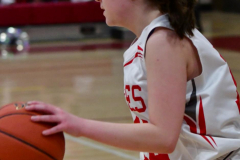 Gallery CIAC Girls Basketball; Wolcott vs. Holy Cross - Photo # 623