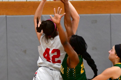 Gallery CIAC Girls Basketball; Wolcott vs. Holy Cross - Photo # 626