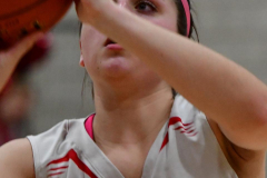 Gallery CIAC Girls Basketball; Wolcott vs. Holy Cross - Photo # 631