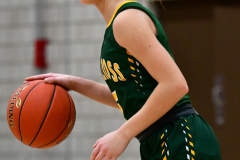 Gallery CIAC Girls Basketball; Wolcott vs. Holy Cross - Photo # 661