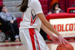 Gallery CIAC Girls Basketball; Wolcott vs. Holy Cross - Photo # 674