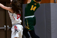 Gallery CIAC Girls Basketball; Wolcott vs. Holy Cross - Photo # 678
