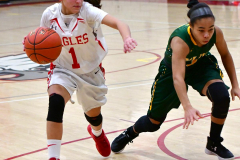 Gallery CIAC Girls Basketball; Wolcott vs. Holy Cross - Photo # 683