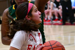 Gallery CIAC Girls Basketball; Wolcott vs. Holy Cross - Photo # 685