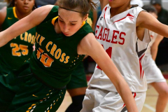 Gallery CIAC Girls Basketball; Wolcott vs. Holy Cross - Photo # 687