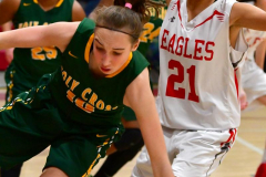 Gallery CIAC Girls Basketball; Wolcott vs. Holy Cross - Photo # 688