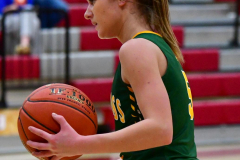 Gallery CIAC Girls Basketball; Wolcott vs. Holy Cross - Photo # 689