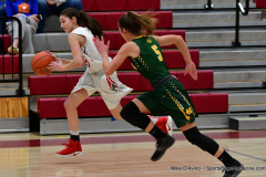 Gallery CIAC Girls Basketball; Wolcott vs. Holy Cross - Photo # 693