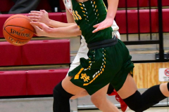 Gallery CIAC Girls Basketball; Wolcott vs. Holy Cross - Photo # 695