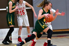 Gallery CIAC Girls Basketball; Wolcott vs. Holy Cross - Photo # 708