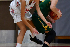 Gallery CIAC Girls Basketball; Wolcott vs. Holy Cross - Photo # 709