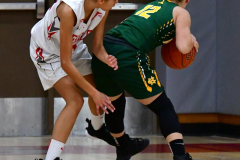 Gallery CIAC Girls Basketball; Wolcott vs. Holy Cross - Photo # 710