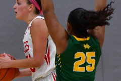 Gallery CIAC Girls Basketball; Wolcott vs. Holy Cross - Photo # 713