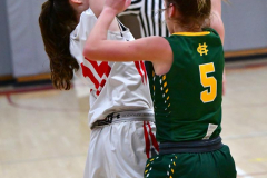 Gallery CIAC Girls Basketball; Wolcott vs. Holy Cross - Photo # 715