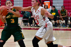 Gallery CIAC Girls Basketball; Wolcott vs. Holy Cross - Photo # 716